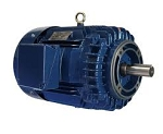 2 hp 145TC electric motor 1800 rpm 3 phase 208-230/460 totally enclosed  no base