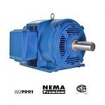 250 hp 447T electric motor 1800 rpm 3 phase odp DHP2504