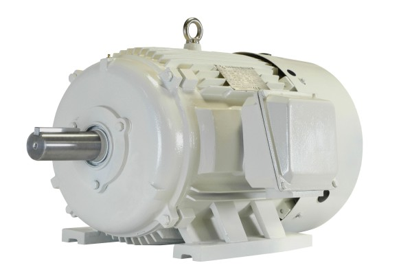 5 hp 254T electric motor 900 rpm  230/460/796 design D OWP254T-5-8