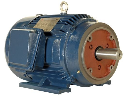 125 hp 445TC electric motor 1200 rpm 3 phase TEFC PE445TC-125-6